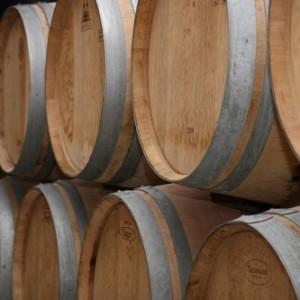 sudove vina